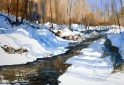 Zimowe cienie 50x34
