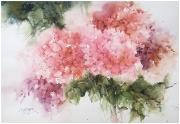 Hortense rozowe