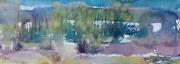 038 Podlasie -Skrzeszew   75x26
